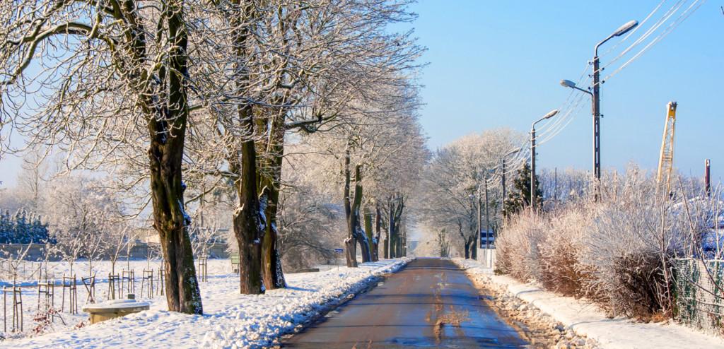 12 zima 2021 z 13.01.2021